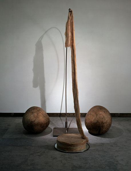 《针(纺锤)》 needle (fuseau)